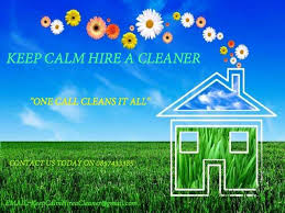 CHEMICALS VS ORGANIC CLEANING